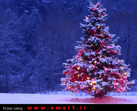 christmas-lights-SMSI1.IR