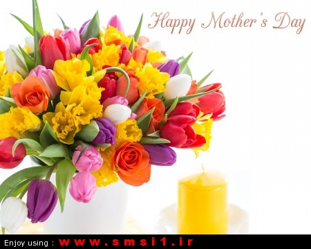 Tulips-Flowers-To-Celebrate-Mothers-Day-E